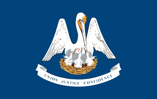 Louisiana - state flag